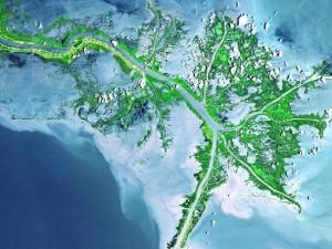 航拍全球河流三角洲